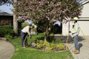 Lincolnshire Homeowners Seek Lawn Care Service